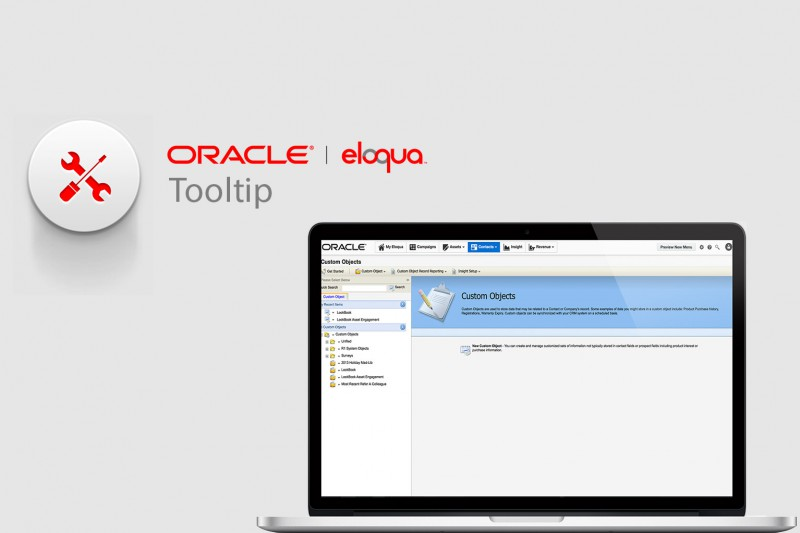 Laptop screen in Oracle Eloqua of Custom Objects