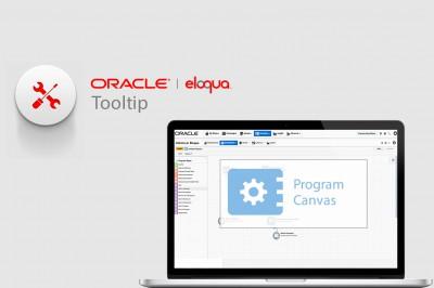 Computer-screen-Eloqua-instance-program-canvas