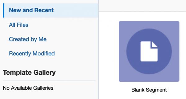 Oracle Eloqua Segmentation - blank Segment